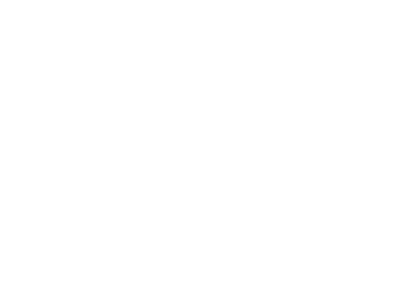 adidas-support